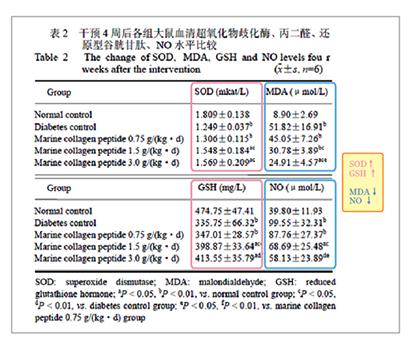 オリゴペプチドの酸化ストレス軽減作用